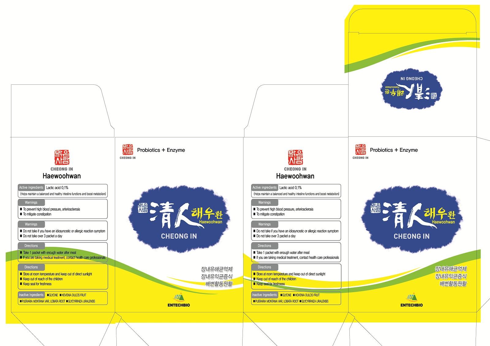 Cheongin Haewoohwan (Lactic Acid) Pellet [Entechbio Co., Ltd]