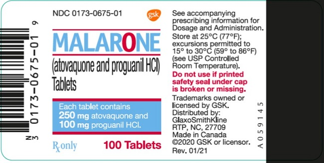 Malarone Adult 100 count label