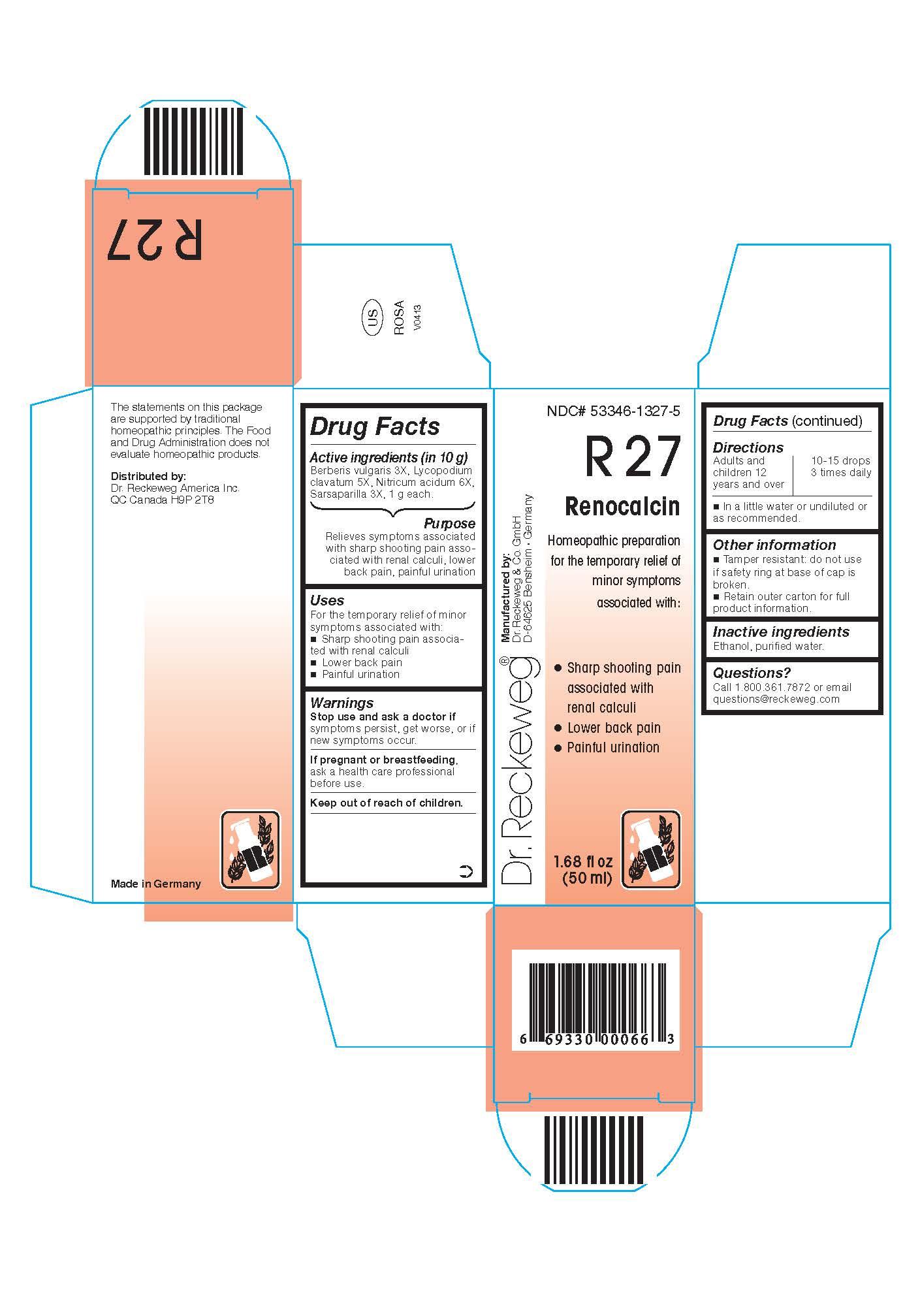 Dr. Reckeweg R27 Renocalcin Combination Product (Berberis Vulgaris 3x, Lycopodium Clavatum 5x, Nitricum Acidum 6x, Sarsaparilla 3x) Liquid [Pharmazeutische Fabrik Dr. Reckeweg & Co]