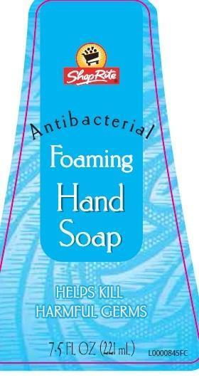 Hand Wash (Benzalkonium Chloride) Liquid [Wakefern Food Corp]