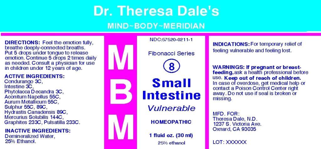 MBM 8 Small Intestine